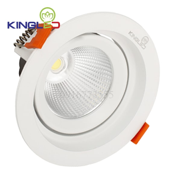 Đèn led spotlight Kingled 30w tròn DLR-30-T180