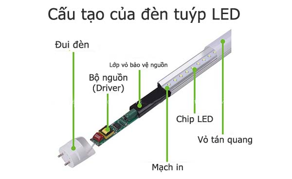 Cấu tạo của đèn tuýp led T8