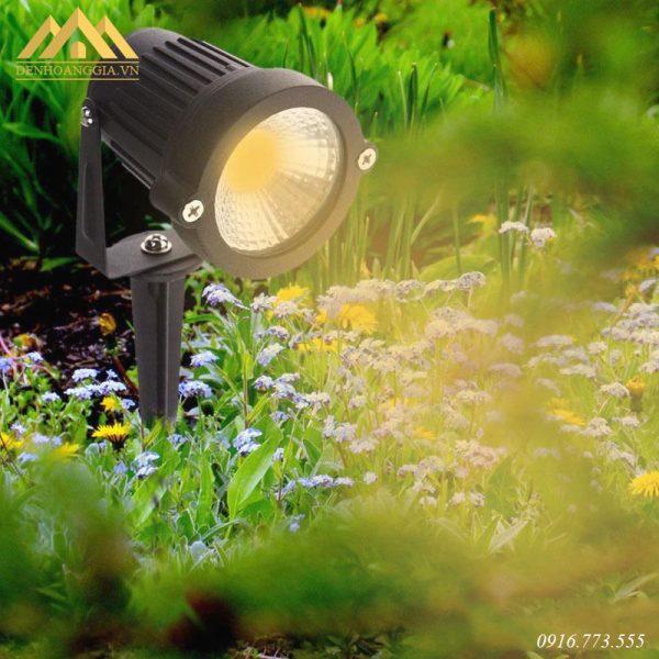Ánh sáng của đèn led rọi cỏ tự nhiên, rõ nét